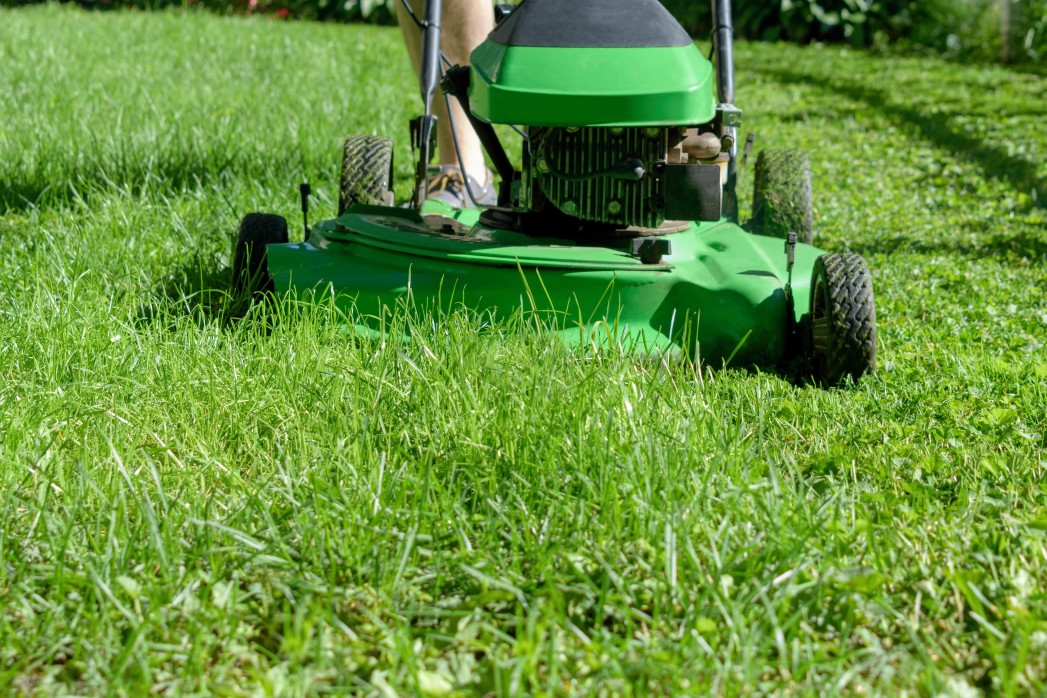 Picture of a lawn mower cutting the grass to get it it ready for winter