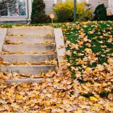 How to Get Your Home and Yard Ready for Winter Featured image of a leaf covered front lawn