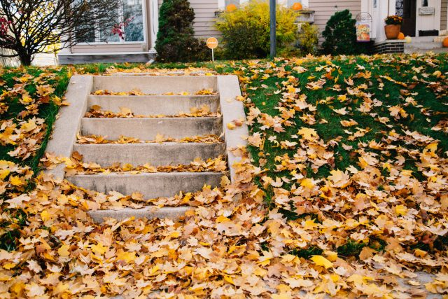 How to Get Your Home and Yard Ready for Winter
